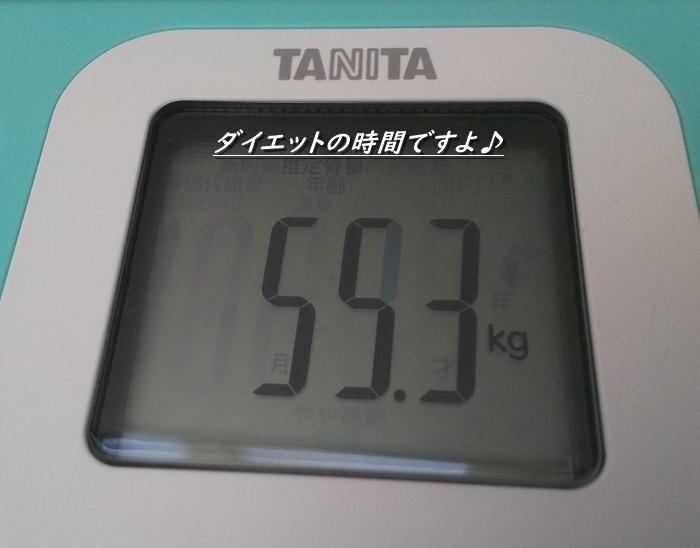 55.3キロ