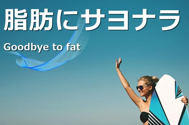 脂肪の悩みを解決!